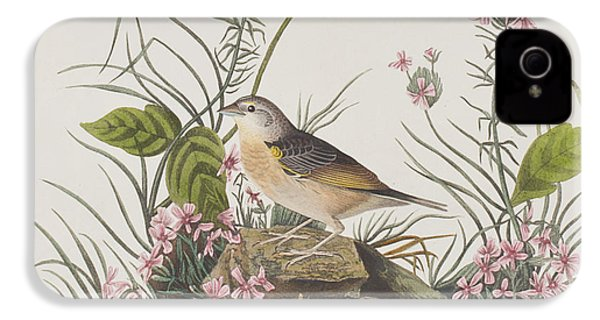 Yellow-winged Sparrow IPhone 4 Case by John James Audubon