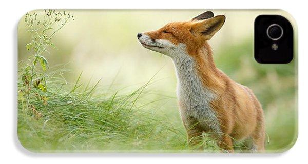 Zen Fox Series - Zen Fox IPhone 4 Case