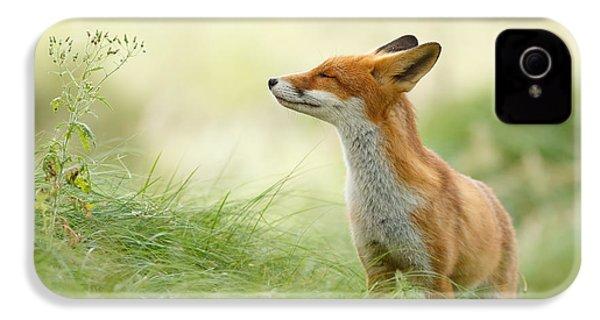 Zen Fox Series - Zen Fox IPhone 4 / 4s Case by Roeselien Raimond