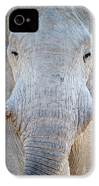 African Elephant Loxodonta Africana IPhone 4 / 4s Case by Panoramic Images