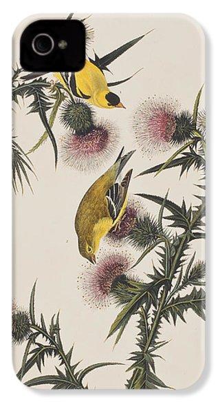 American Goldfinch IPhone 4 Case by John James Audubon