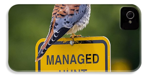 American Kestrel IPhone 4 Case