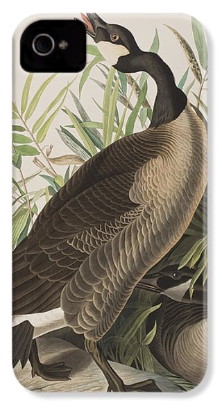 Canada Goose IPhone 4 Case by John James Audubon
