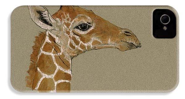 Giraffe Head Study  IPhone 4 Case by Juan  Bosco