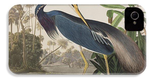 Louisiana Heron  IPhone 4 Case by John James Audubon