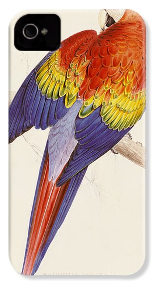 Red And Yellow Macaw IPhone 4 Case by Edward Lear