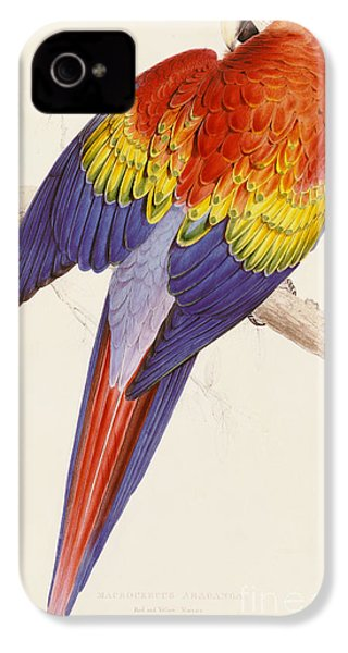 Red And Yellow Macaw IPhone 4 / 4s Case by Edward Lear