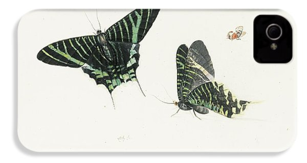 Studies Of Two Butterflies IPhone 4 Case by Anton Henstenburgh