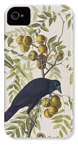 American Crow IPhone 4 Case