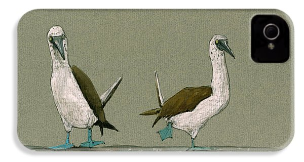 Blue Footed Boobies IPhone 4 Case