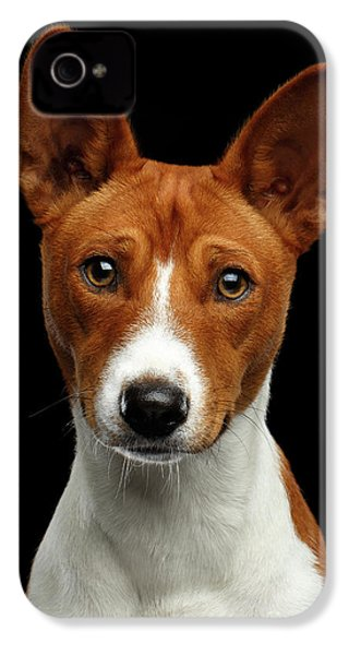 Pedigree White With Red Basenji Dog On Isolated Black Background IPhone 4 Case by Sergey Taran