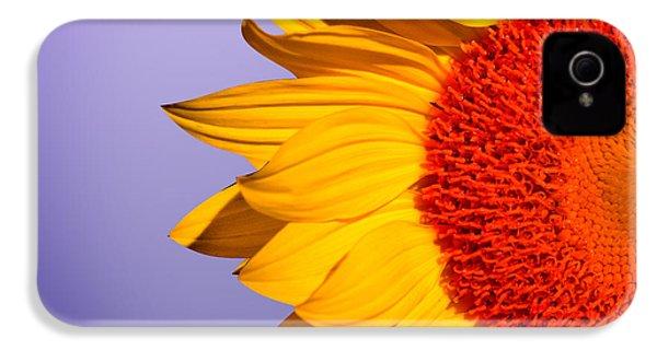 Sunflowers IPhone 4 Case by Mark Ashkenazi