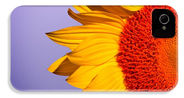 Sunflowers IPhone 4 Case by Mark Ashkenazi