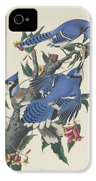 Blue Jay IPhone 4 Case by Dreyer Wildlife Print Collections