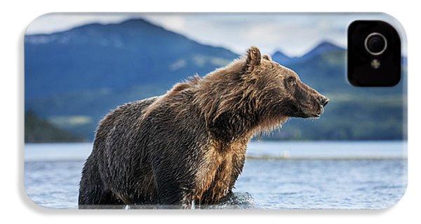 Coastal Brown Bear  Ursus Arctos IPhone 4 Case by Paul Souders