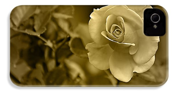 Floral Gold Collection IPhone 4 Case by Marvin Blaine