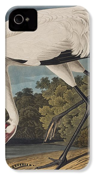 Whooping Crane IPhone 4 Case