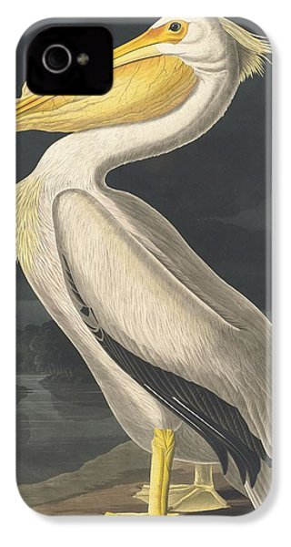 American White Pelican IPhone 4 Case by Rob Dreyer