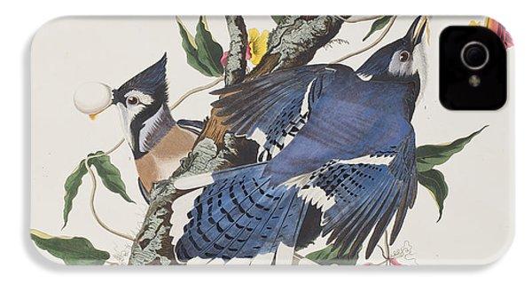 Blue Jay IPhone 4 / 4s Case by John James Audubon