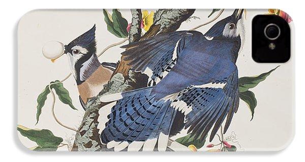 Blue Jay IPhone 4 Case by John James Audubon