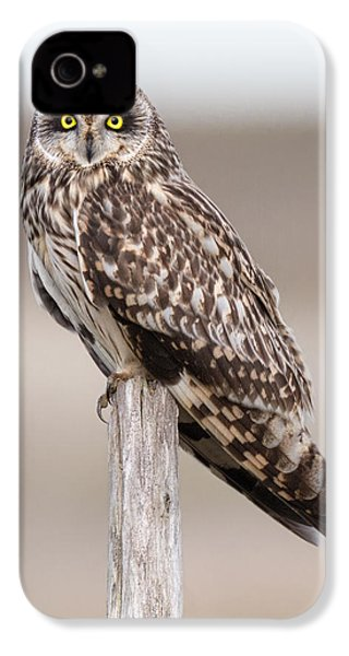 Short Eared Owl IPhone 4 Case by Ian Hufton