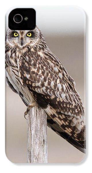 Short Eared Owl IPhone 4 Case by Ian Hufton