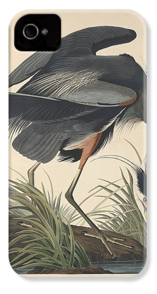Great Blue Heron IPhone 4 / 4s Case by Anton Oreshkin