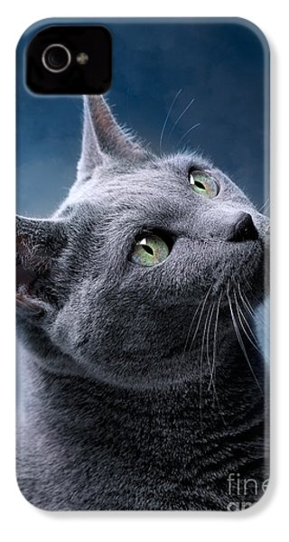 Russian Blue Cat IPhone 4 Case by Nailia Schwarz