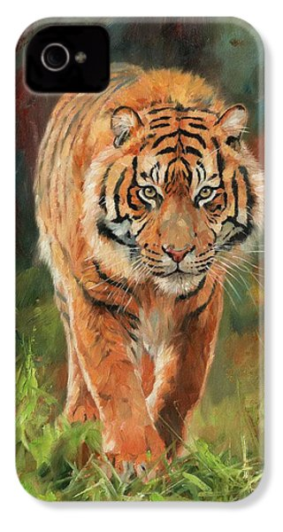 Amur Tiger IPhone 4 Case by David Stribbling