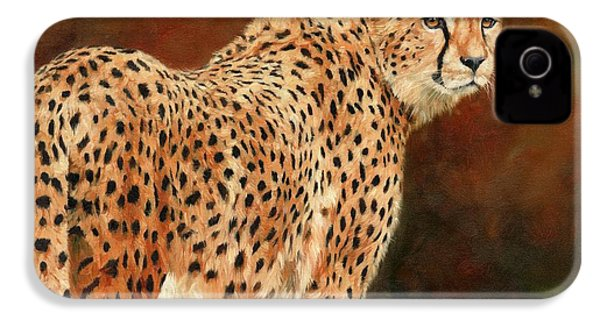 Cheetah IPhone 4 / 4s Case by David Stribbling