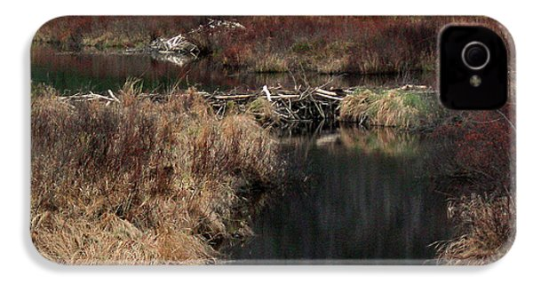 A Beaver's Work IPhone 4 / 4s Case by Skip Willits