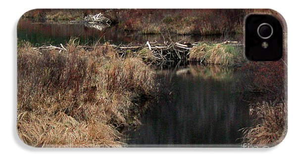 A Beaver's Work IPhone 4 Case by Skip Willits