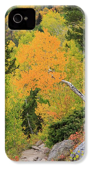 Yellow Drop IPhone 4 Case by David Chandler