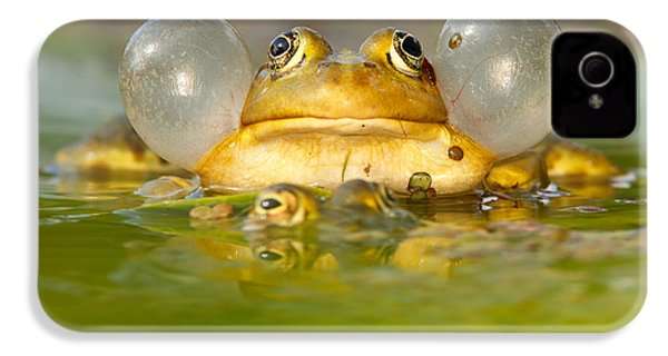 A Frog's Life IPhone 4 Case by Roeselien Raimond