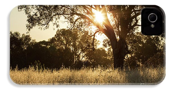 IPhone 4 Case featuring the photograph A Golden Afternoon by Linda Lees