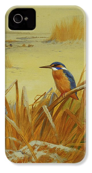 A Kingfisher Amongst Reeds In Winter IPhone 4 / 4s Case by Archibald Thorburn