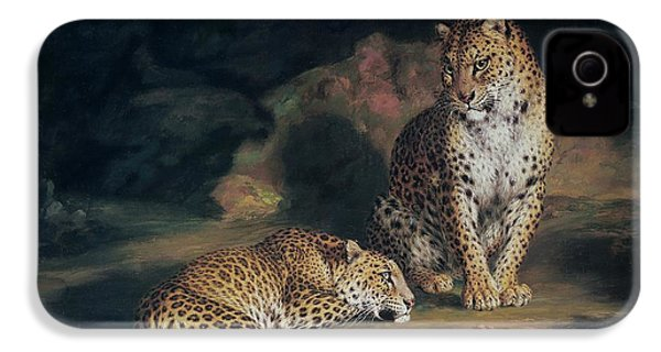 A Pair Of Leopards IPhone 4 Case by William Huggins