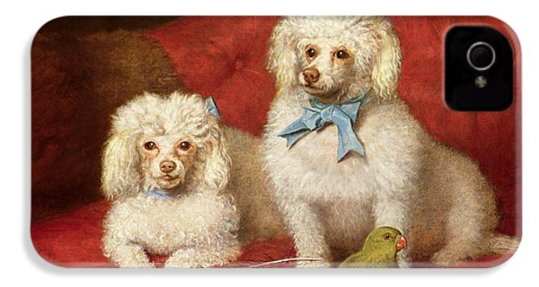 A Pair Of Poodles IPhone 4 Case