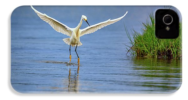 A Snowy Egret Dip-fishing IPhone 4 Case by Rick Berk