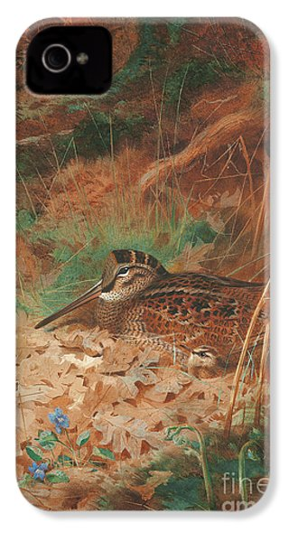 A Woodcock And Chick In Undergrowth IPhone 4 Case by Archibald Thorburn