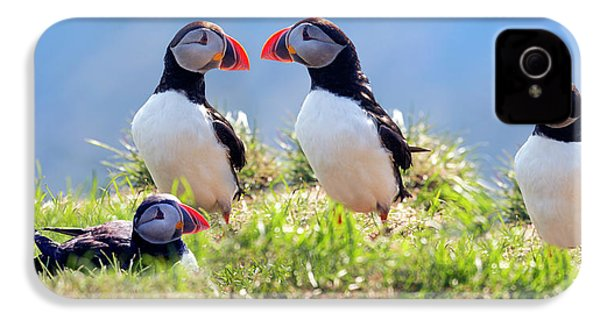 A World Of Puffins IPhone 4 Case