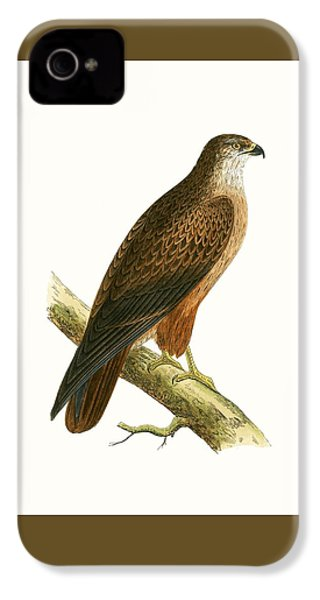 African Buzzard IPhone 4 Case
