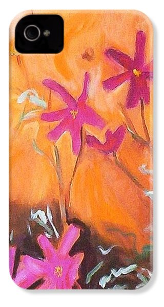 Alba Daisies IPhone 4 Case by Winsome Gunning