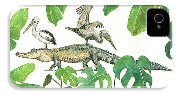 Alligator And Pelicans IPhone 4 Case