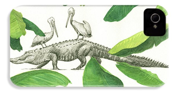 Alligator With Pelicans IPhone 4 Case