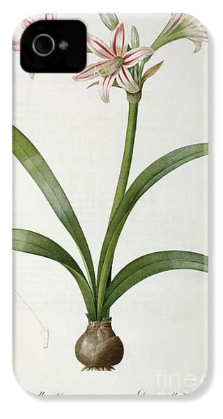 Amaryllis Vittata IPhone 4 / 4s Case by Pierre Redoute