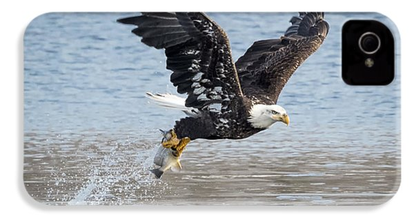 American Bald Eagle Taking Off IPhone 4 Case by Ricky L Jones