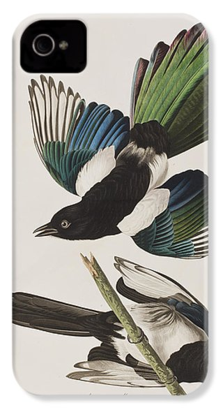 American Magpie IPhone 4 / 4s Case by John James Audubon