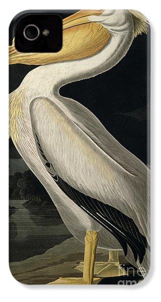 American White Pelican IPhone 4 Case by John James Audubon