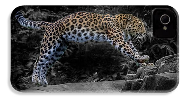 Amur Leopard On The Hunt IPhone 4 Case